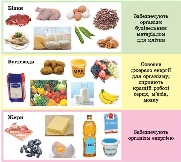 Углеводы глюкоза по химическому строению относятся к