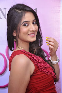 Acress Harshika Pooncha Picture Gallery at Panipuri Movie Press Meet Pics 0023