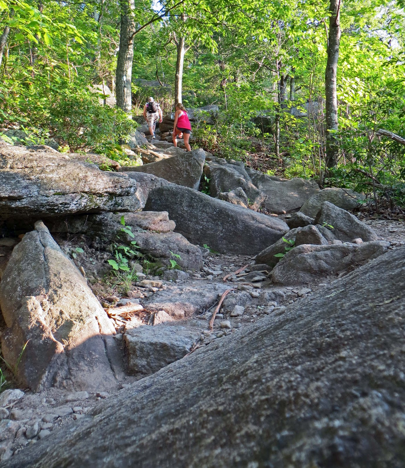 Old Rag Mountain Hikes/Patrols By RSL: June 9&10, 2012