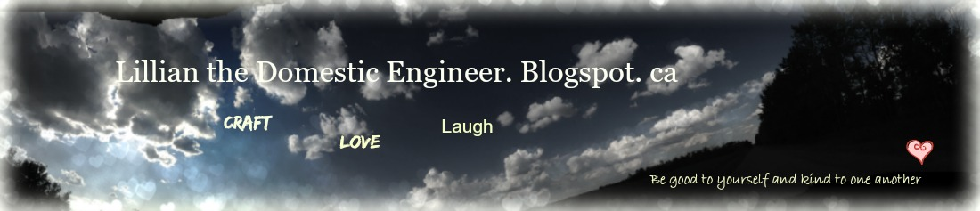 Lillian the Domestic Engineer. Blogspot.ca