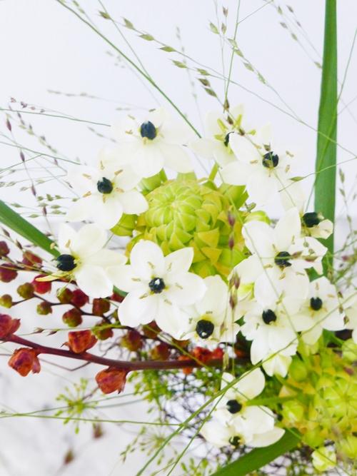 Freitagsblumen Blumen Herbst Dekoration