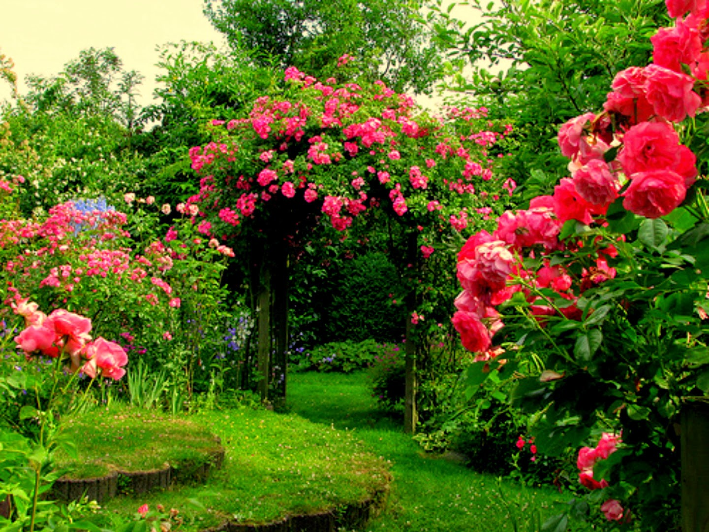 1 nice flowers garden wallpapers cokolwiekap for Flower garden landscape