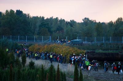 migráció, magyar-horvát határ, határzár, határkerítés, Magyarország, Horvátország, Zákány,