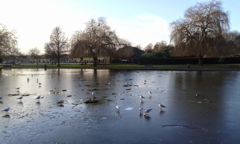 One of the frozen ponds at Broomfield Park in Palmers Green, London