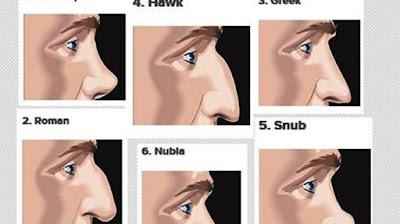 Ketahui Karakter Anda Melalui Bentuk Hidung