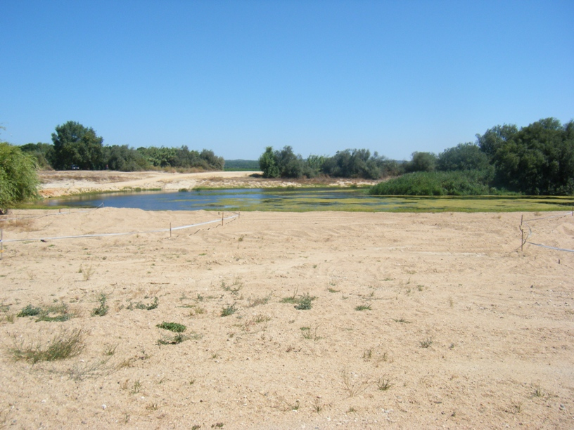 Areal e água