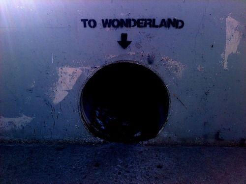 To Wonderland - Seems Legit