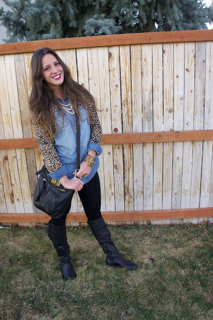 Leopard and Denim