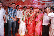 Amala Paul Al Vijay wedding Photos-thumbnail-21