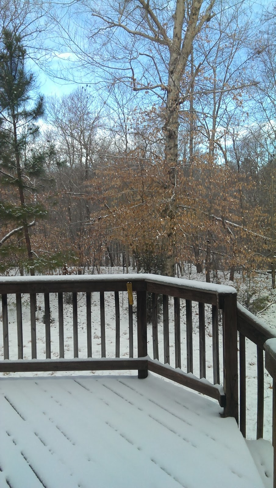 snow on the deck and back yard