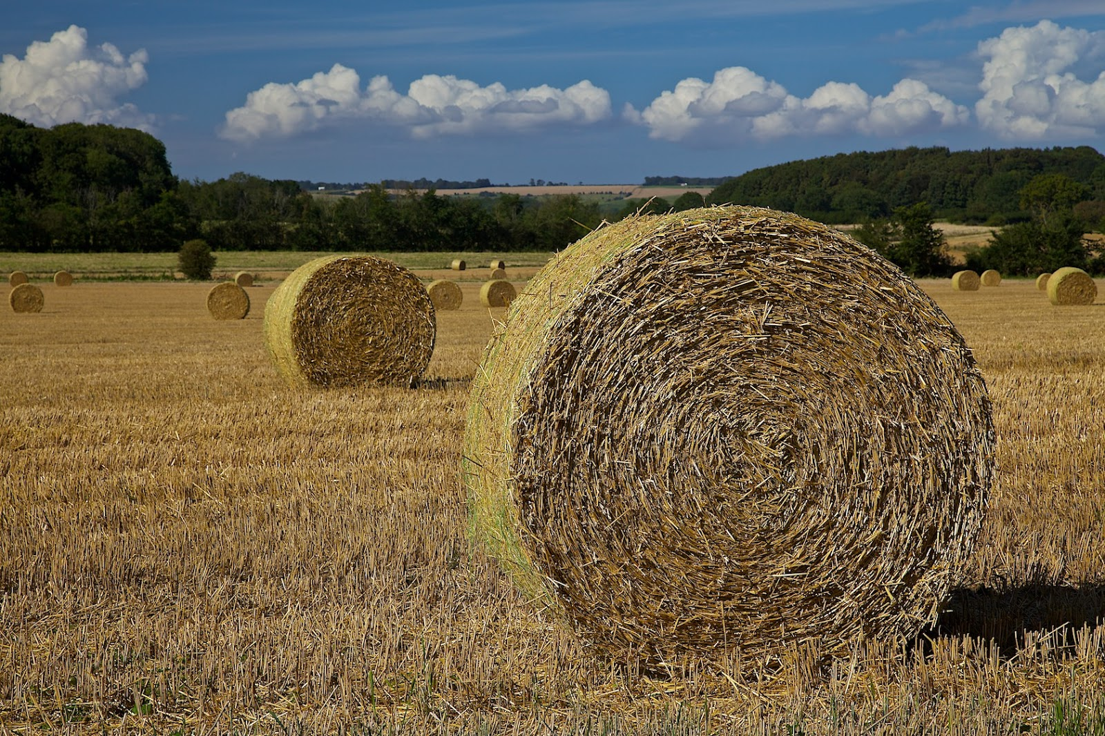 As I See It - David K Hardman Photography: Hay bales in Kent