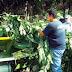 ΟΧΙ του ΕΔΣΝΑ στο δήμο Σαρωνικού για Δημιουργία Μονάδας Κομποστοποίησης
