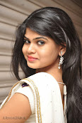 Alekhya Latest Photos in Saree at Donga Prema Audio-thumbnail-20