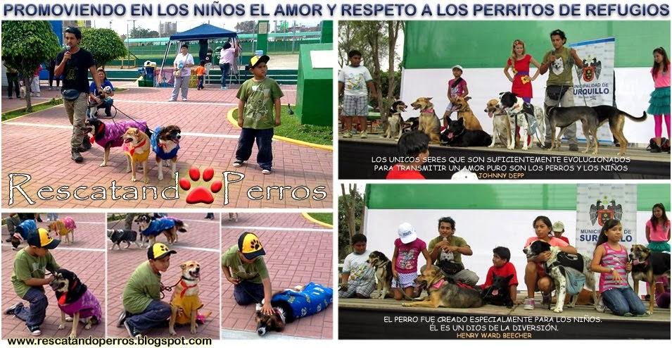 EVENTOS Y CAMPAÑAS CANINAS