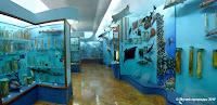Зал Рыбы