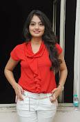 Nikitha Narayan Glam pix-thumbnail-15