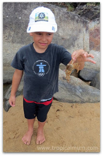 child uncertain about picking up crab