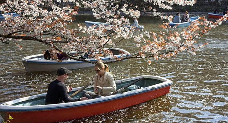 Taman Inokashira, Kutukan Penghancur Pasangan