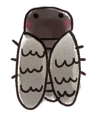 クマゼミのイラスト(虫)