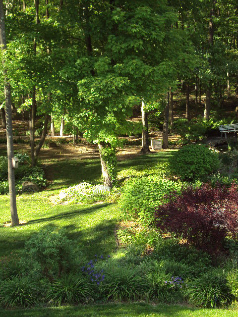 The key to a successful shade garden plan before you for Garden consultant
