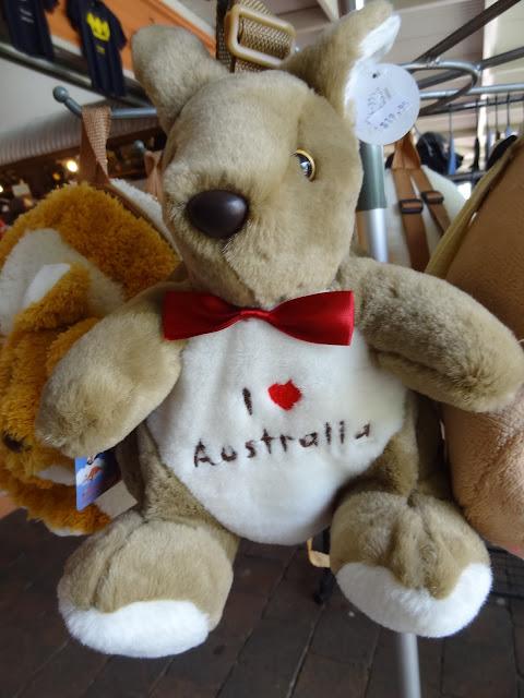 cairns australia kangaroo backpack