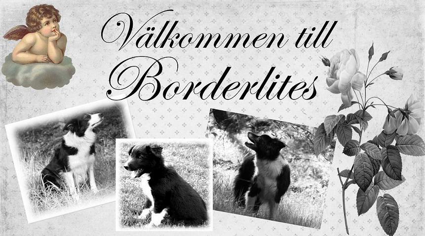 Borderlites