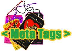 cara memasang meta tags
