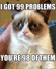 grumpy cat 99 problems, grumpy cat,tardar sauce, grumpy meme