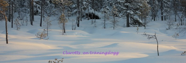 Clurottskennel -en träningslogg
