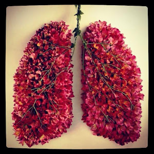 1000  images about Baby project on Pinterest | Nursery art, Lungs ...