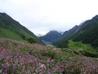 Valley of flowers trek in the Garhwal Himalyas beyond Hemkund sahib shrine
