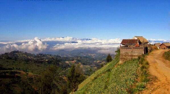 Tips berwisata ke Gunung Bromo - bromotravelguide
