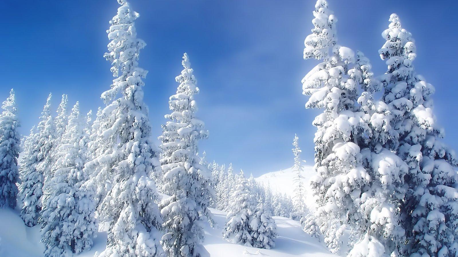 http://2.bp.blogspot.com/-N1AuJvDVn6U/T1E9jh78OPI/AAAAAAAAAOM/SmHAkIQbODE/s1600/Winter_Wonderland_1920x1080-HDTV-1080p.jpg