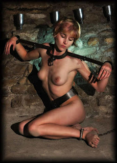 Sexy bitches - rs-bdsm-018-739685.jpg