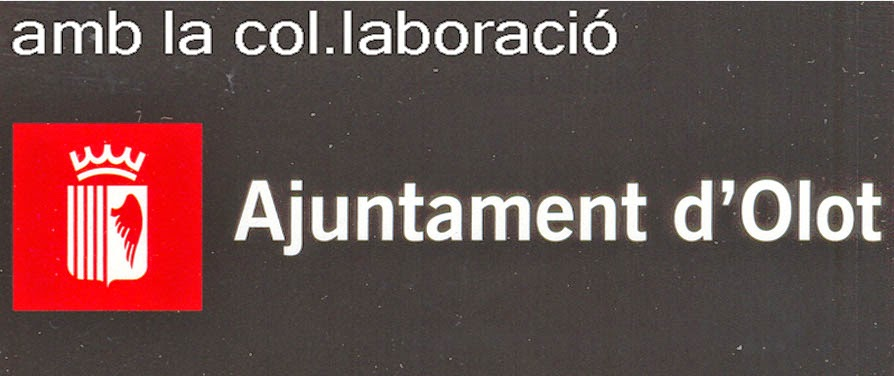 Ajuntament d' Olot