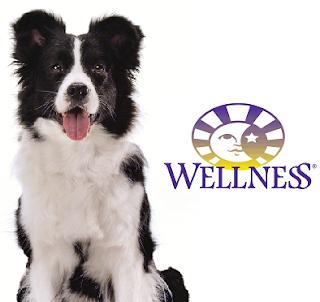 New Wellness Core Large Breed Formula Dog Food
