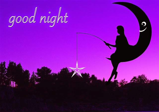 ليلة سعيدة تحت ضوء القمر