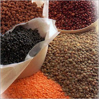 Pulses Trade Steady In Spot Markets On Friday