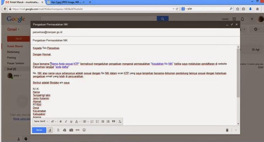 Email Pengaduan CPNS kepada Panselnas