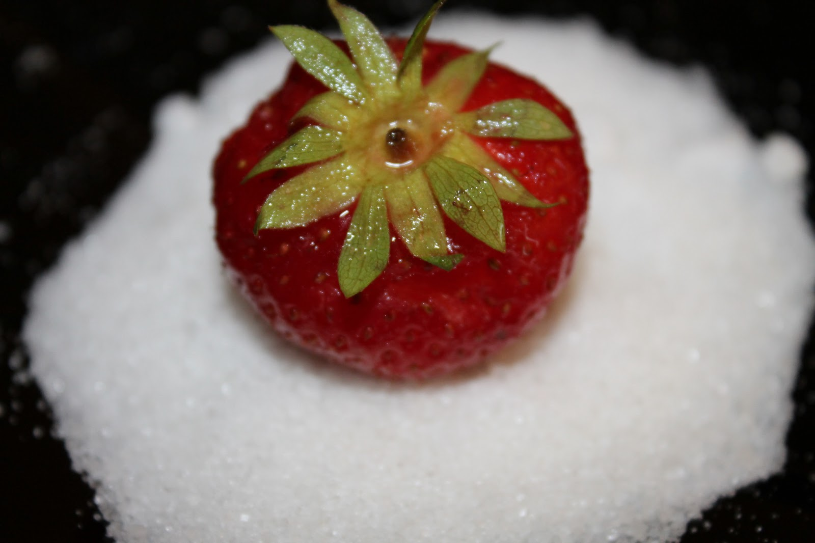 The Home Of The Twisted Red LadyBug: The Anatomy Of A Strawberry