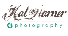 Website & Client Galleries