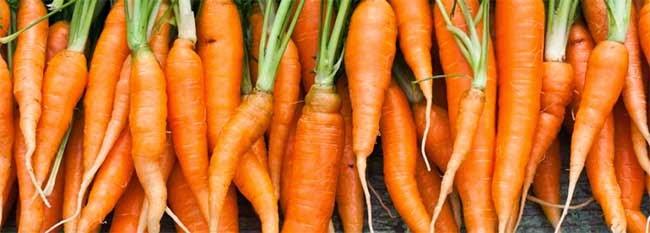 καρότα βιταμίνες