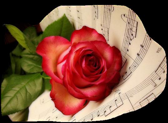 Résultat d'images pour Tasse de thé et jolies fleurs