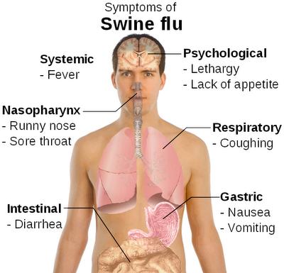 Norovirus Treatment Natural