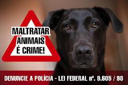 Denuncie e vamos juntos colocar na cadeia quem maltrata os animais!