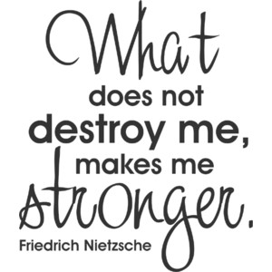 What does not destroy me makes me stronger
