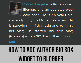 How to Add Author Bio Box Widget to Blogger