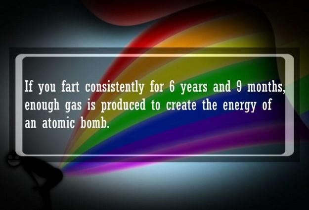 Fart fact!