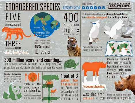 saving endangered animals essay