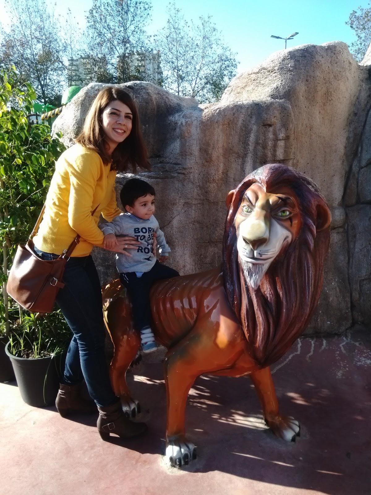 aslan kral, king, lion king,lion